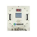Wall-Mounted Natural Gas Analyzer Gasboard-3500